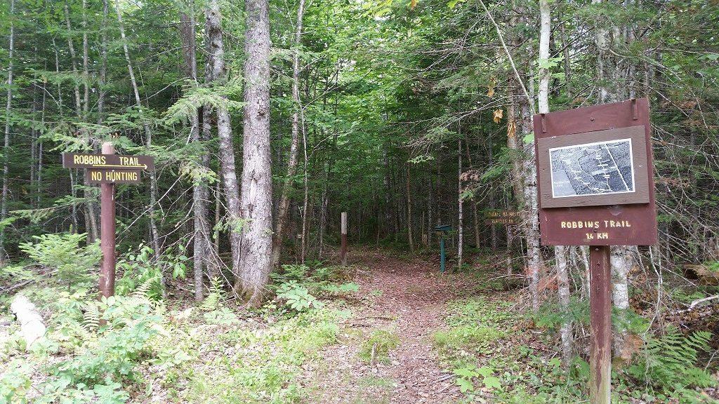 Valleyfield Demo Woodlot Trail.jpg