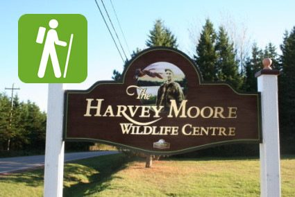 Harvey_Moore_Wild_life_Area_Trail.jpg