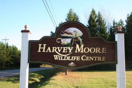 Harvey Moore Wildlife Sanctuary